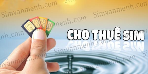 thue-sim-vip